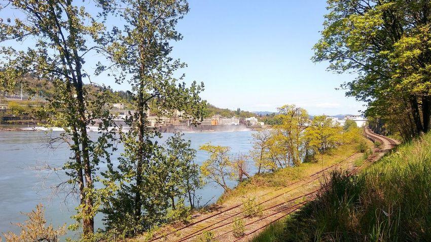 Railroad Track Water Tree Lake Reflection Sky Tranquil Scene Mountain Range Countryside Lakeside Rocky Mountains