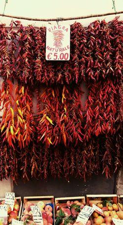 Napoli Italy Amalfi Coast Spicy Food Streetfood