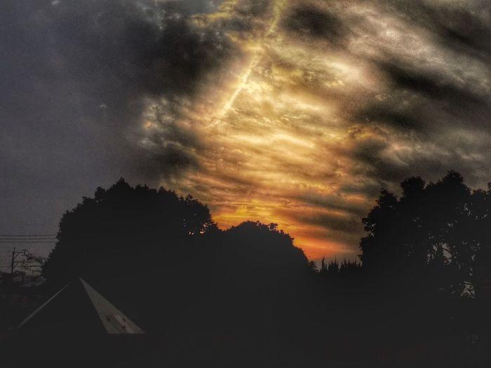 Sky Silhouette
