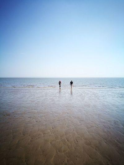 Beach Life Clear Sky Sea Beach Blue Idyllic Shore Low Tide Calm