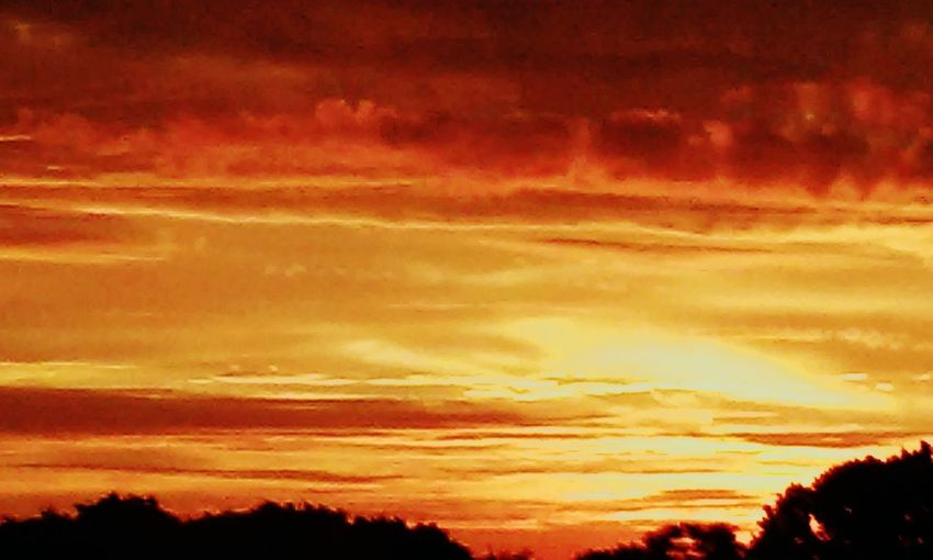 Sunrise at i-275 & mi, ave First Eyeem Photo