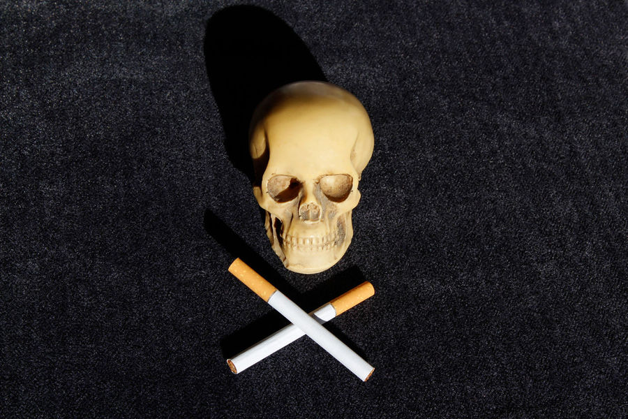 """Skull and two crossed cigarettes """"Jolly Roger"""" on dark anthracite velvet background, horizontal. Dark Dark Photography Danger Sign Jolly Roger Smoking Addictions  Bad Habits Black Background Cıgarettes Deathly Danger Health Concept Health Hazard Health Is Wealth Health Issues Human Skull Prevent Lung Cancer Quit Smoking Concept Representation Sign Skull And Cigarettes Smoking Kills Spooky Still Life Studio Shot Tobacco Field Tobacco Product Warning!"""