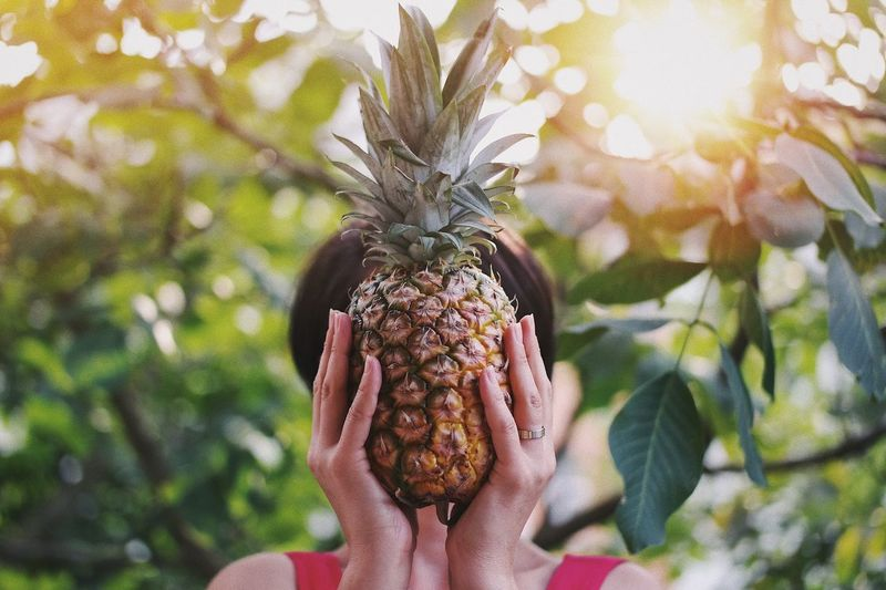 Close-Up Of Woman Holding Pineapple Against Trees