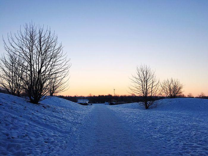 Cold Sunrise Morning Sky Winter2016 Snow