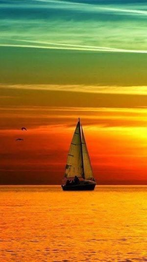 Colorful and peace Sunset Sky Orange Color Water Sea Nautical Vessel Transportation Horizon Over Water Beauty In Nature Waterfront Scenics - Nature Horizon Mode Of Transportation Cloud - Sky No People Idyllic Nature Tranquil Scene Sailboat Tranquility
