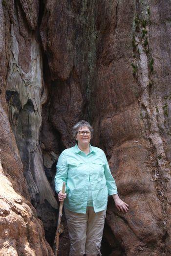 Smiling senior woman standing against sequoia tree trunk