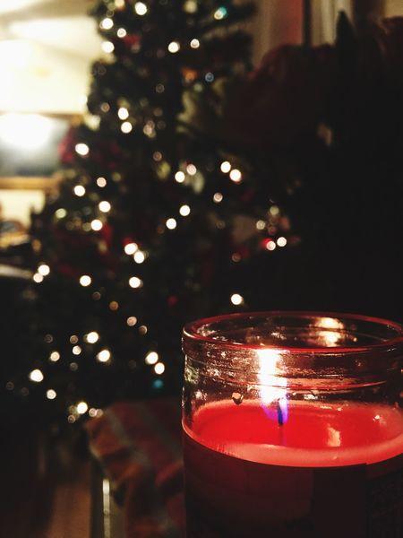 Festive Season Christmas Christmas Tree Merry Christmas! Light By Candlelight Candle