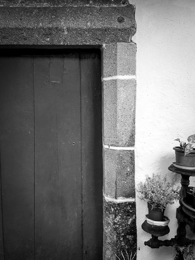 Monochrome Photography Wall - Building Feature Full Frame Day Damaged No People Weathered Blue Vase Flower Plants