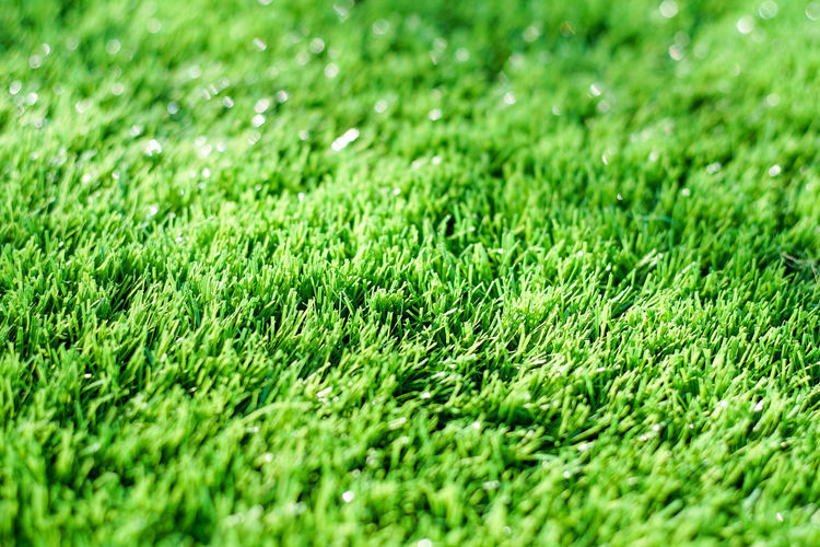 Backgrounds Beauty In Nature Close-up Day Field Full Frame Grass Green Green Color Nature No People Outdoors Soccer Field
