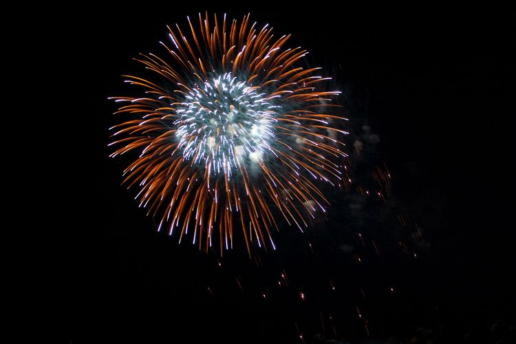 Low angle view of firework display against sky at night