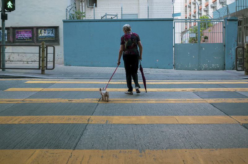 Full Length One Person Real People City Architecture Walking Day Rear View Built Structure Transportation Lifestyles Cleaning Building Exterior Holding Street Road Leash Dog Pets