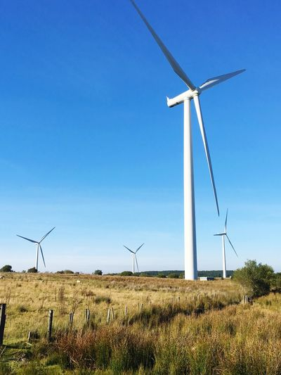 Alternative Energy Wind Turbine Environmental Conservation Wind Power Renewable Energy Fuel And Power Generation Windmill Industrial Windmill Technology Field Blue Traditional Windmill Grass Rural Scene Day Outdoors Nature Sustainable Resources No People Wind