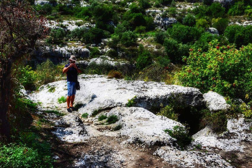 Men Full Length Tree Water Adventure Growing Plant Life Stalk Hiker