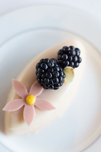 Top view of mulberry cake with fresh berries. Food And Drink Food Freshness Healthy Eating Fruit Berry Fruit Wellbeing Plate Close-up Indoors  No People High Angle View Blackberry - Fruit Still Life Indulgence Studio Shot Bowl Sweet Food Focus On Foreground Group Of Objects Temptation Mulberry