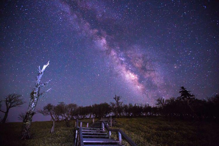 大台が原 正木峠 Nara Japan Oodaigahara Galaxy Astronomy Milky Way Star - Space Space Tree Sky Landscape Star Field Space And Astronomy Star Astrology Infinity Purple