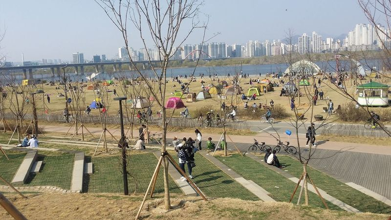 Hangang Park Hangang River, Yeouido , Seoul , Yeouido Seoul Seoul Spring Southkorea