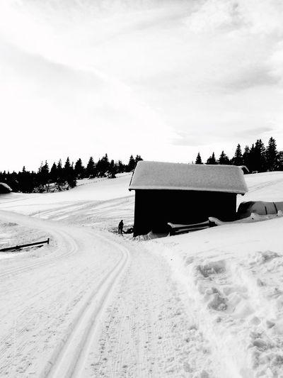 Winter Wonderland Norway Skeikampen Skiing Blackandwhite