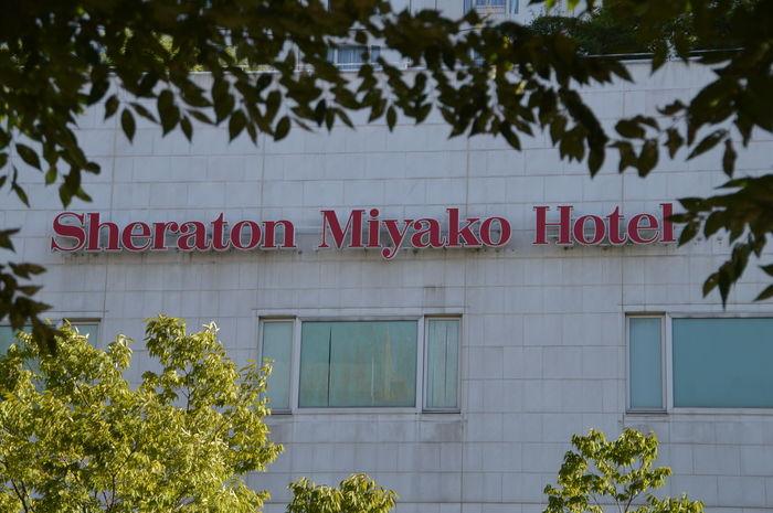 Sheraton Miyako Hotel Osaka Japan Japan Japanese  OSAKA Sheraton Sign Tree Trees Hotel Miyako
