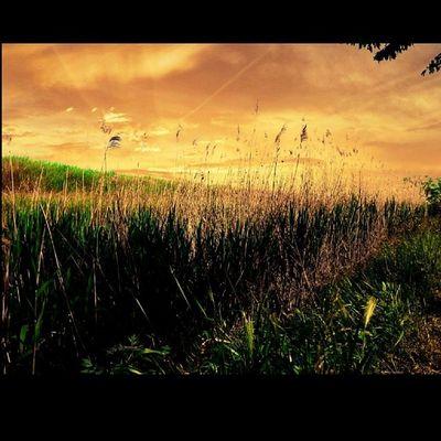 Dawn Ig_sky Ilovezr Bagljas