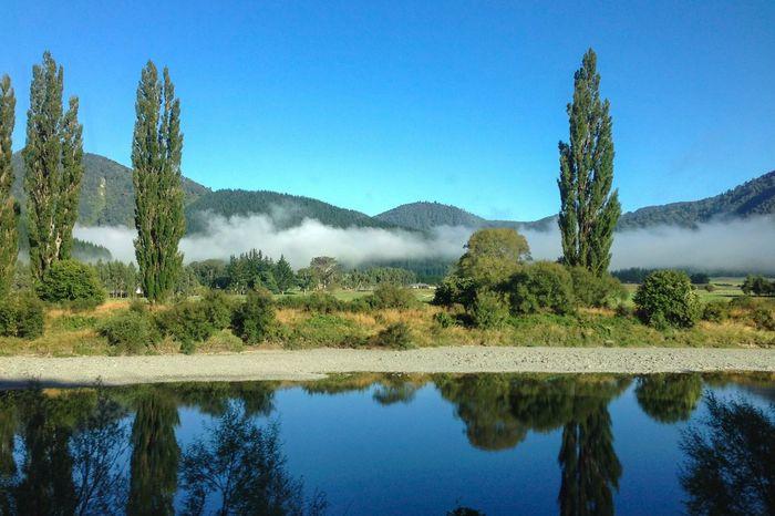 Morning fog New Zealand