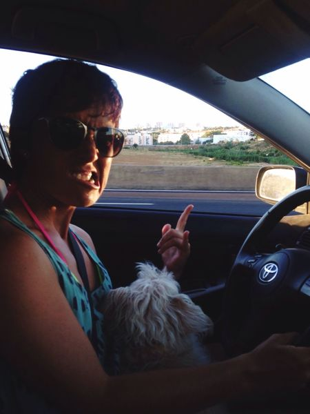 People And Places Pets Driving Home Herbestfriend Weekendmood Travel