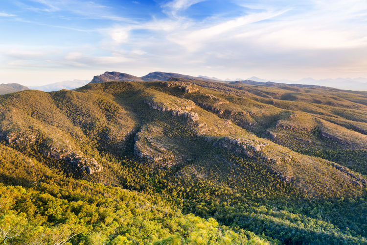 Spectacular mountain scenery at sunset in the Grampians National Park, Victoria, Australia Scenics - Nature Beauty In Nature Tranquil Scene Tranquility Sky Environment Cloud - Sky Landscape Mountain Non-urban Scene Plant Nature Idyllic No People Day Land Growth Tree Remote Green Color Outdoors Rolling Landscape Mountains Hills The Grampians Halls Gap Australia Australian Landscape