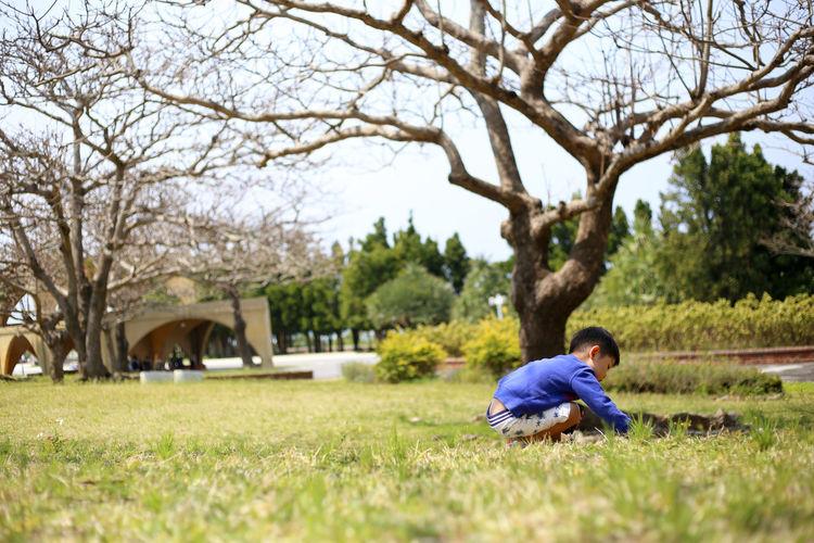 Boy Playing On Grassy Field