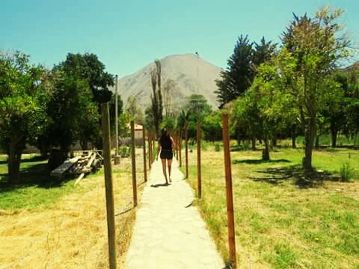 Feel The Journey Chile♥ Nature Photography It's Me Valley
