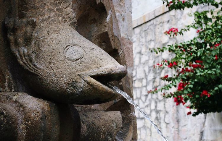 Morelia Michoacán Architecture Built Structure Sculpture Stone Material Building Exterior History Statue No People Outdoors Travel Destinations Day