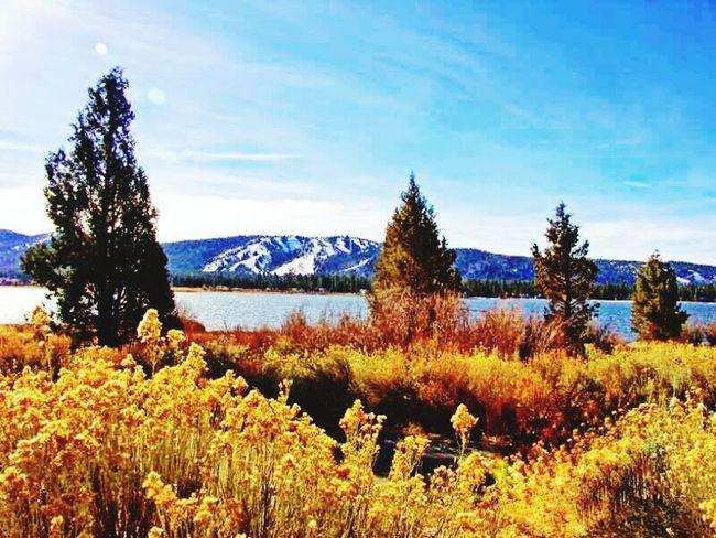 Springtime at Big Bear Lake California