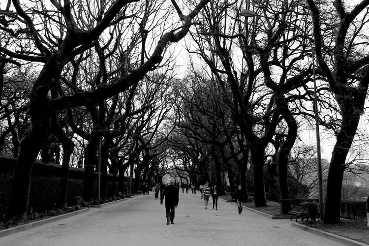 Black&white Blackandwhite Photography Open Edit Santiago De Compostela SPAIN Travel Photography