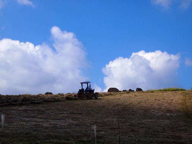 Agriculture Cloud - Sky Field Japan Aso Landscape No People Outdoors Pasture Land Rural Scene Sky