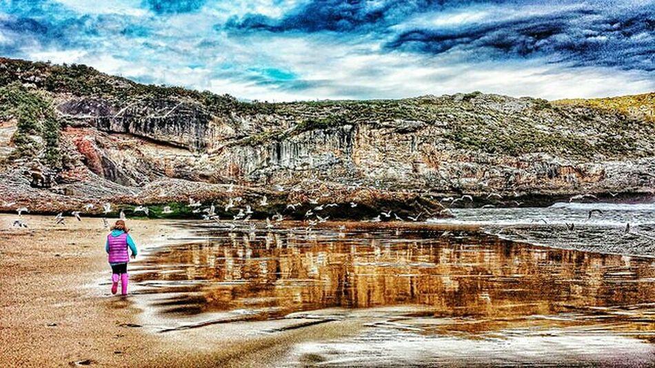 100 gaviotas en el mar.. Landscape Asturias Llanes HDR Nature Water Reflections Beachphotography