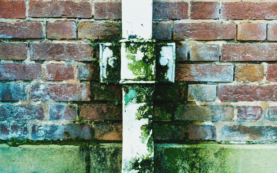 ... Moss Adapted To The City ... Backgrounds Brick Wall Built Structure Full Frame Architecture Close-up Outdoors Multi Colored No People Background Bricks Growth Pipe Green Growing Human Planet Damage Decay Leaking Moisture Nature On Your Doorstep Beautiful Decay Pattern