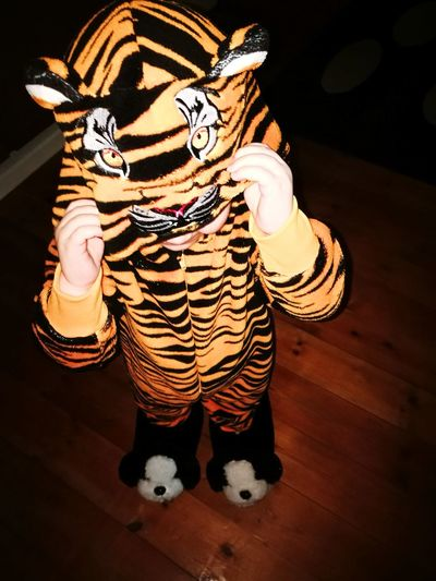 Christmas morning Christmas. Kid PJ  Pijamas Costume Tiger Tiger People Indoors  Human Body Part Disguise