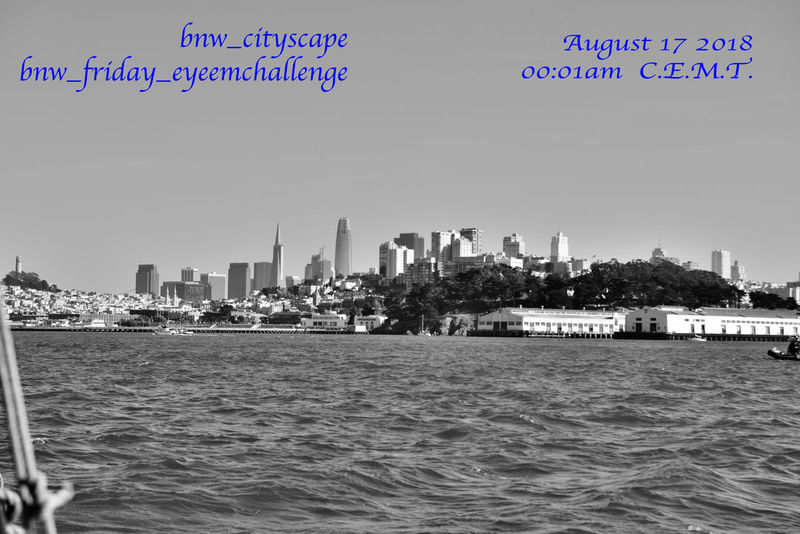 This weeks theme for the bnw_friday_eyeemchallenge will be bnw_cityscape. Please share with us the panoramas of your favorite city. No color splash or reposts. Use your photos only. I will give you the start signal. Remember to use the tags Bnw_cityscape Bnw_friday_eyeemchallenge San Francisco CA🇺🇸 Skyline Skyscrapers Marina District Fort Mason Waterfront Park Waterfront♥ Telegraph Hill Coit Tower Transamerica Pyramid Building Salesforce Tower Financial District  Nautical Vessels San Francisco Bay Monochrome_Photography Monochrome Aboard The Alma View From Deckside Black & White Black & White Photography Black And White Black And White Collection  Scenic A Day On The Bay Sailing