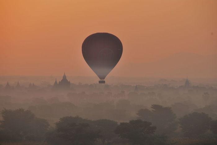 Adventure Baghan Baloon Balooning Baloonography Baloons Hot Air Balloon Journey Myanmar Myanmarphotos Nature Orange Color Pagoda Pagoda Building Pagodas Pagode Pagodentempel Sonnenaufgang Sonnenaufgang❤  Sunlight Sunrise Sunrise Silhouette Tranquil Scene Tree