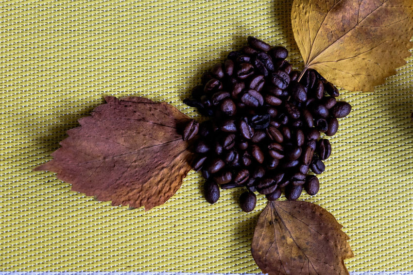 Coffee Indoors  Purple Textured  Flower No People Freshness Food Day Healthy Eating Close-up Nature Coffee Coffee Bean Dry Leaves EyeEm New Here Eyeem Philippines The Week On EyeEm Nature Freshness