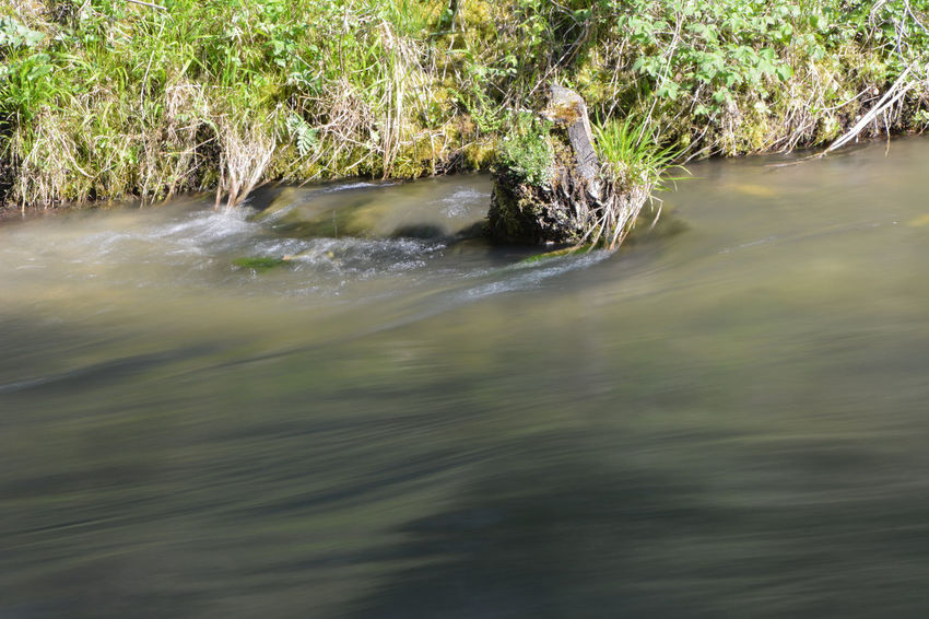 Beauty Of Photography Small River Blurred Water Inspiring Nature The Great Outdoors - 2016 EyeEm Awards Nature Photography Camera Practice Smooth Water
