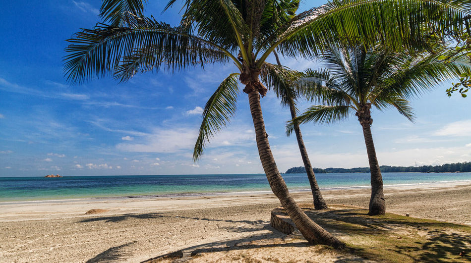 Beautiful beach in Indonesia Dream Holiday Paradise On Earth Beach Beauty In Nature Day Horizon Over Water Indonesia_allshots Nature No People Outdoors Palm Tree Sand Scenics Sea Sky Tranquil Scene Tranquility Water