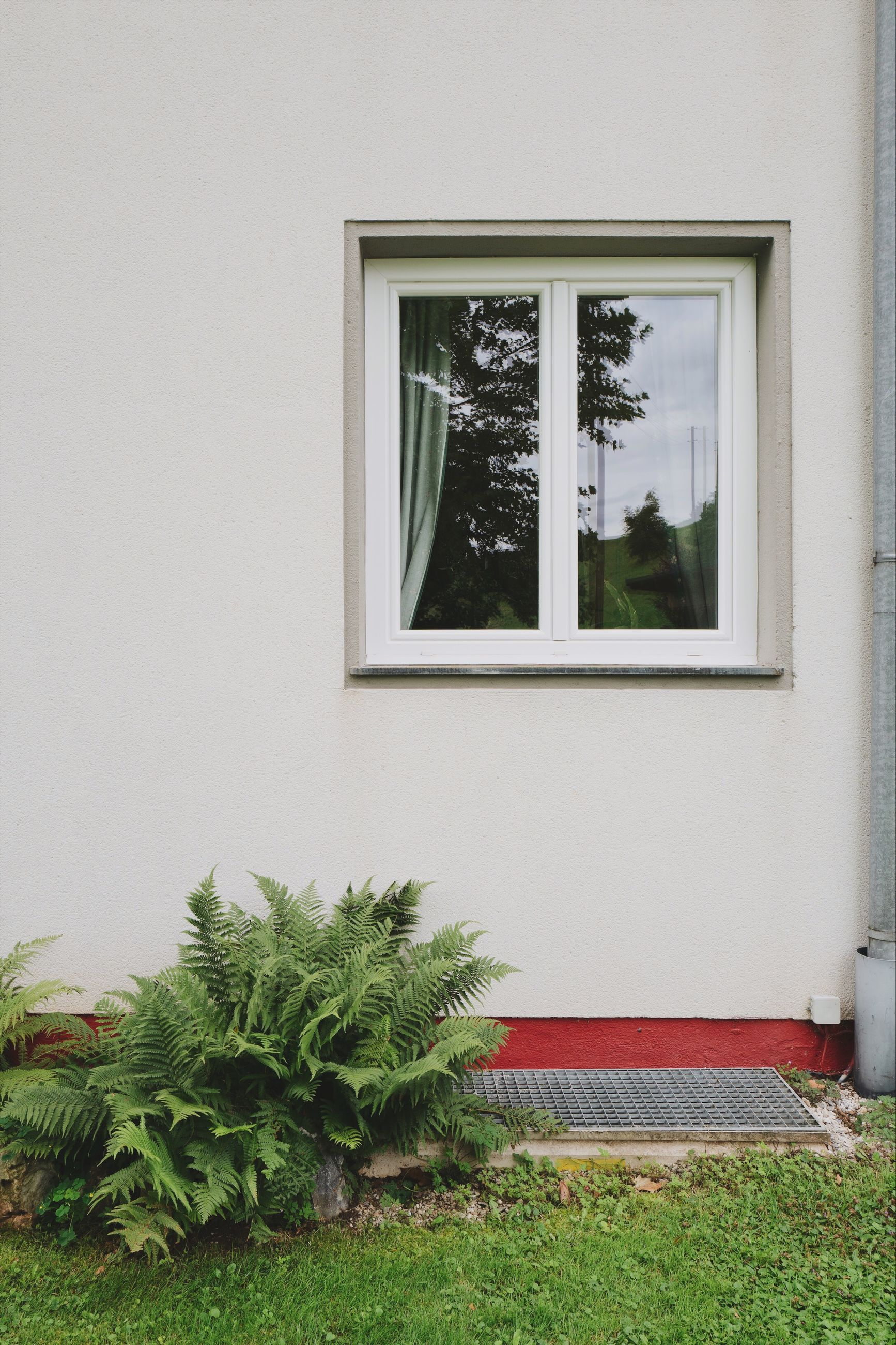 plant, window, architecture, built structure, grass, nature, day, building exterior, tree, growth, no people, house, green color, building, outdoors, lawn, field, wall - building feature, front or back yard, glass - material