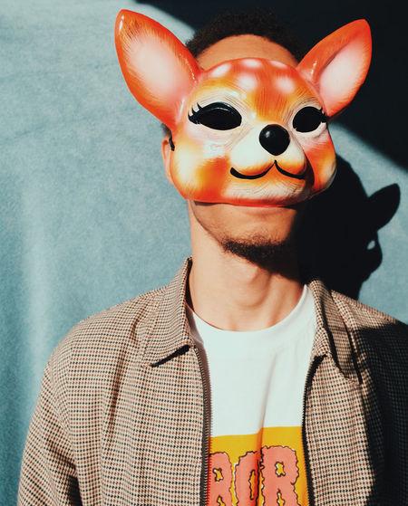 Fox One Person