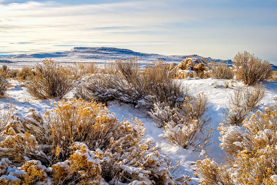 Winter on Antelope Island - Snow covers the brushy, rocky landscape of the Great Salt Lake's Antelope Island in Utah. Utah Landscape Winter