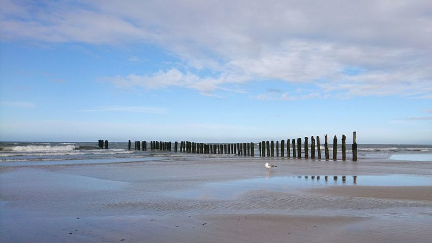 Beach Water In A Row Sea Nature Outdoors Sky Coastline Beauty In Nature Horizon Over Water Sand No People Day Bird Baltic Sea Baltic Sky