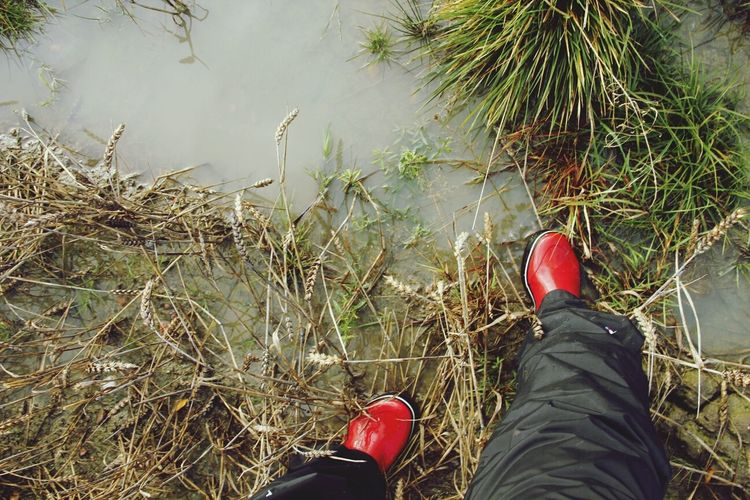 Low section of person wearing rubber boots