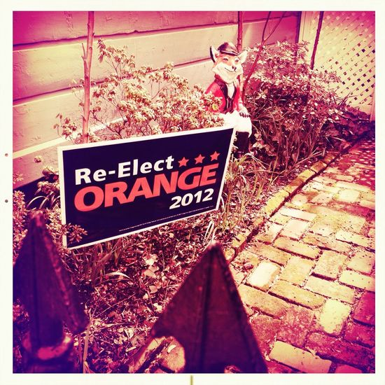 Orange in Washington D.C. No Flash Alfred Infrared Film Orange