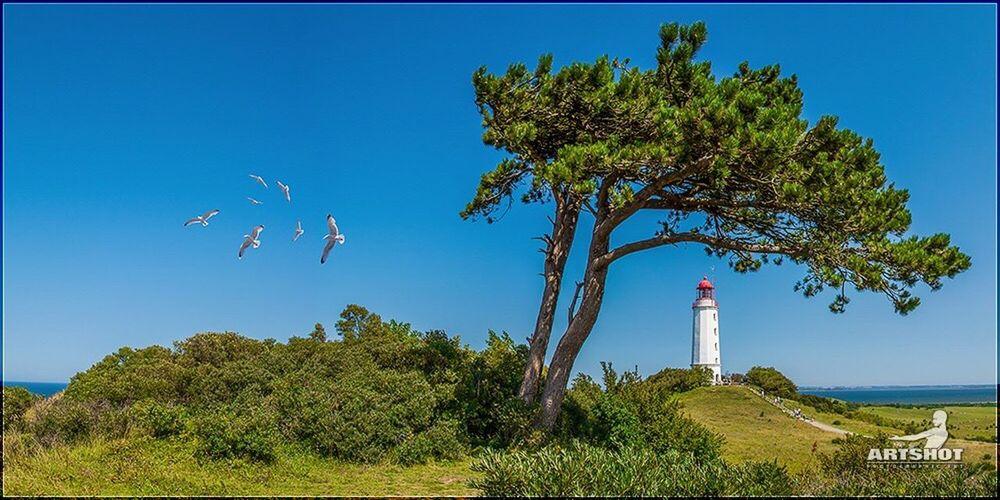Lighthouse - Hiddensee Baltic Sea Nature Outdoors Clear Sky Traveling Still Life GERMANY🇩🇪DEUTSCHERLAND@ Ostsee Baltic Sea Water Landscape Panorama Sea Lighthouse Leuchtturm