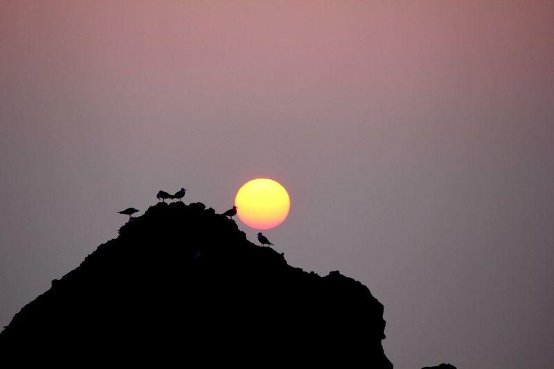 Miyako Sunrise Silhouette Beauty In Nature Nature Sunset Low Angle View Scenics Moon Clear Sky Sun Sky Tranquility Outdoors No People Astronomy Day Japan Photography Miyako Tohoku Iwate Bytheshore