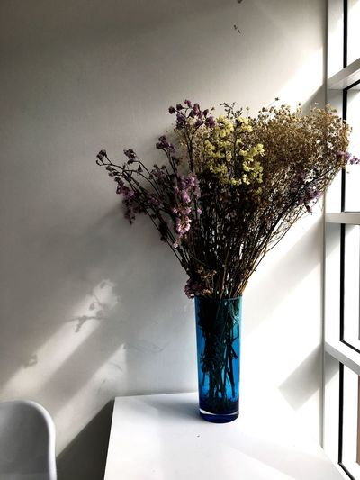 Flower with lonely feel. Dry Flower Indoors  Nature Plant Vase Decoration Day Table Home Interior Flower Flowering Plant Wall - Building Feature Shadow No People Flower Arrangement