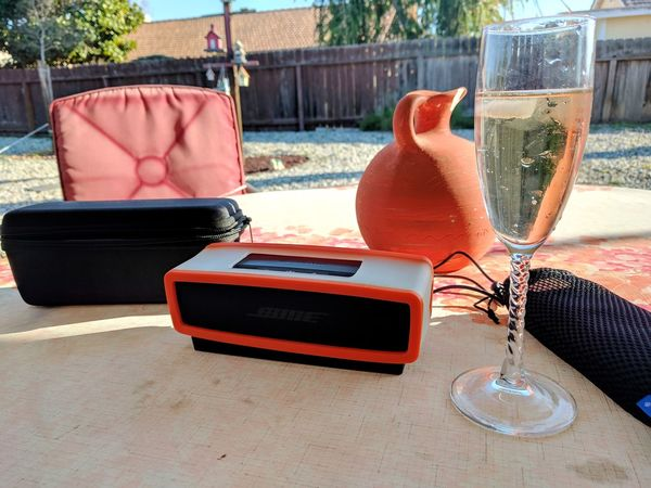 bluetooth and bubbly on a warm spring like day No People Day Outdoors EyeEm Gallery Taking Photos Champagne Champagne Lover Outdoor Patio Patio Wooden Fence Orange Color Trying To Relax Rock Garden